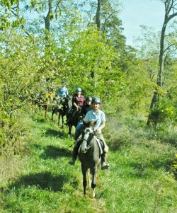 Trail riding line credit Peggy Manness smaller