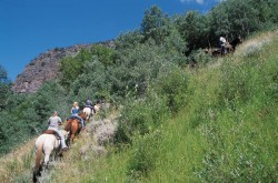 uphill trail no credit