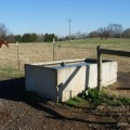 water trough two fields credit Bill Steele