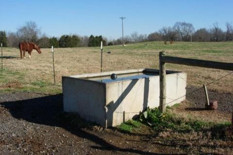 water trough two fields credit Bill Steele