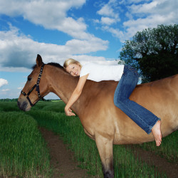 Horse Lov