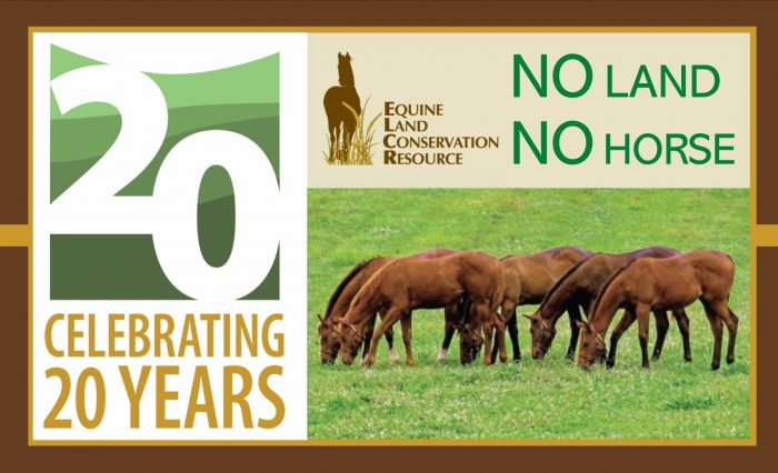 Help ELCR celebrate 20 years of saving horse lands by making a gift or becoming a member today!