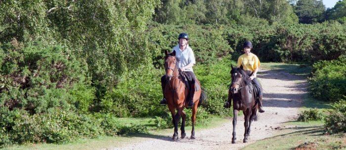 Webinar Recording: Equestrian Trail Design for Urban Multi-Use Trails